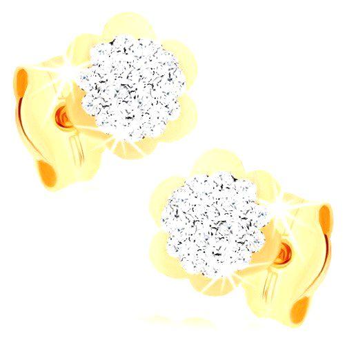 Náušnice v žltom 9K zlate - trblietavý kvietok s lesklým lemom